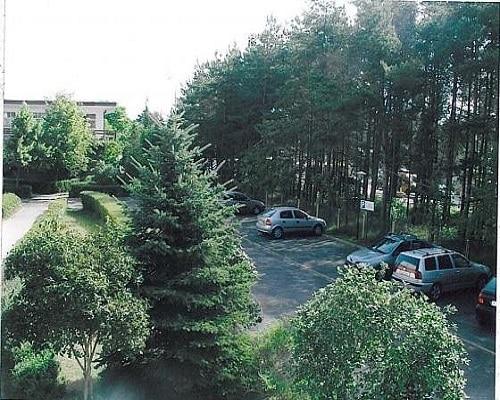 ośrodek Carbo od strony lasu