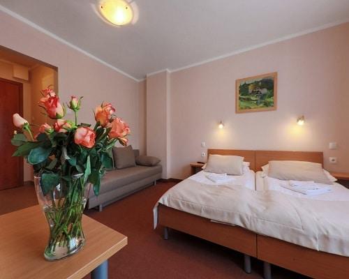Pokój w Hotel*** NAT Wisła