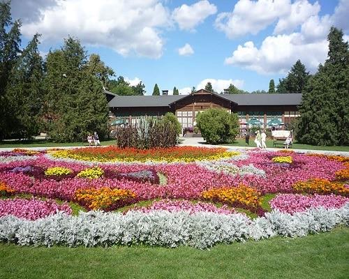 Ciechocinek - dywany kwiatowe