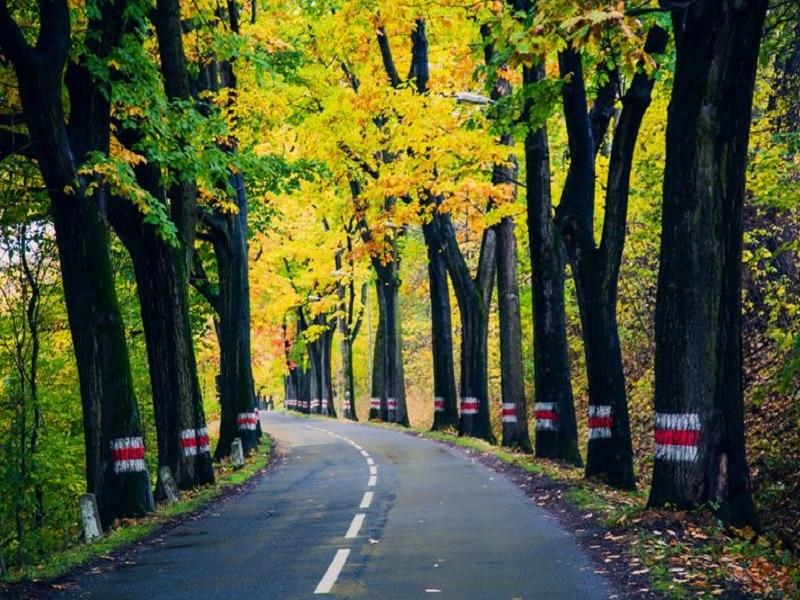 Lądek Zdrój - droga